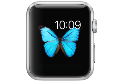 Large 10611 2950 apple watch whatever l